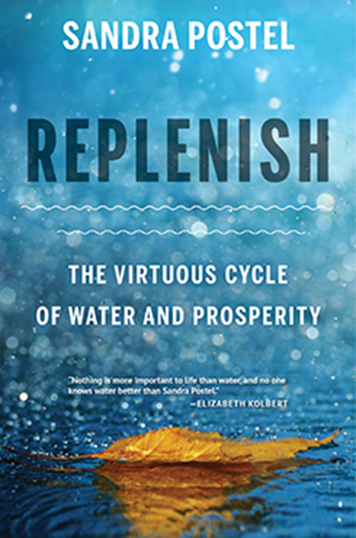 Replenish New Book Release